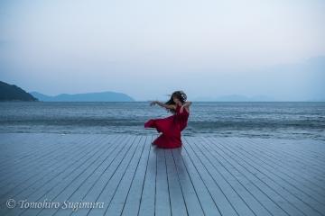 直島(香川県)写真