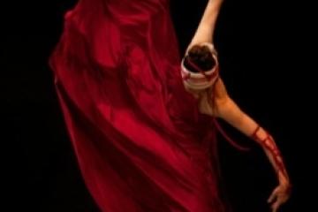 「赤い血 白い乳」報告-舞踊作家協会-