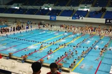 帝京大学水泳部決戦の日